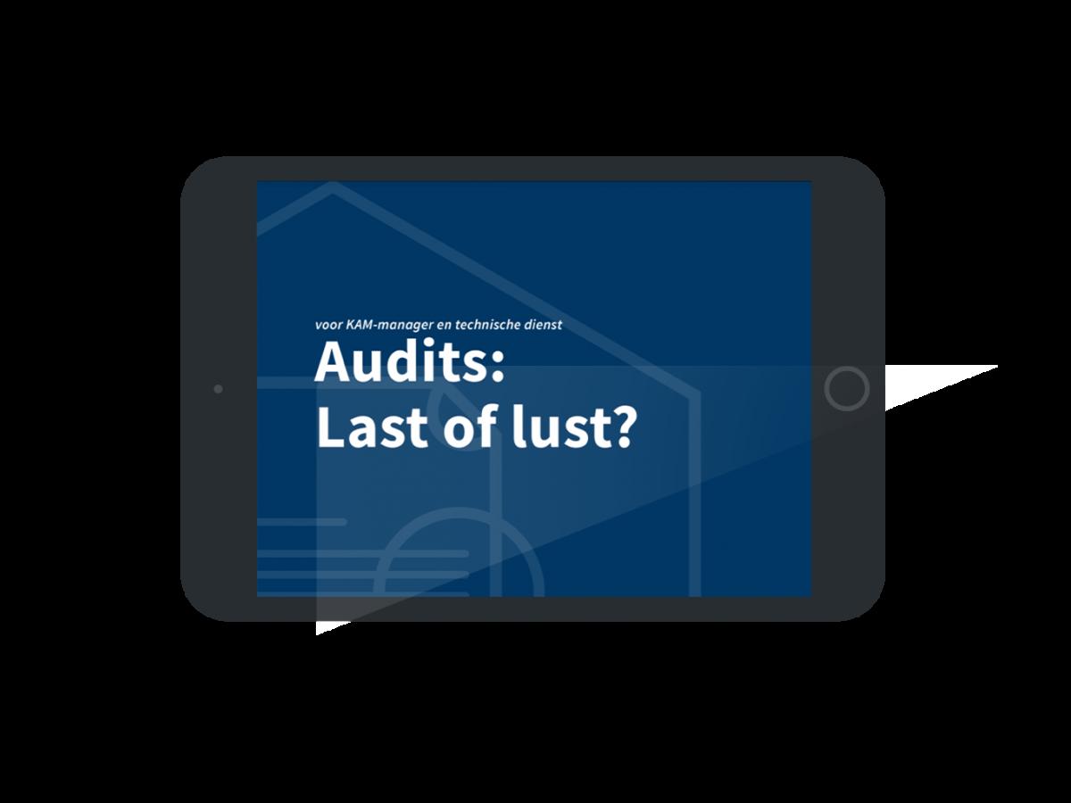 Audits: last of lust